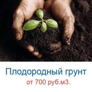 plodorodniy_grunt